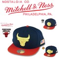 Mitchell&Ness USA 2 Tone Snapback  14851