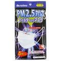 PM2.5対応マスク大人用5P