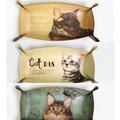 【レトロかわいい】猫 レクトトレー