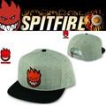 SPITFIRE Bighead Fill Snapback  14930