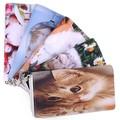 【かわいいネコちゃん】ピクチャープリント長財布 ラウンドファスナー