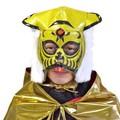 【パーティー イベント】タイガーのマスクリアルバージョン コスプレ 虎トラ プロレス パロディ