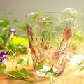 【日本製】凝ったデザインとほのかなカラーリングがかわいい ぶどうのグラス