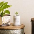 コンクリート壁の質感をイメージした皿付ポット【フォーベトン・ロングポットセット・S】