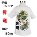 【ダントツのカッコ良さ!】空に昇っていく竜が力強い!子供Tシャツ100〜150cm