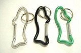 Image Karabiner Key Ring