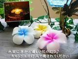 水面に浮かぶ優しい花の灯り♪【フローティングプルメリアキャンドル】アジアン雑貨