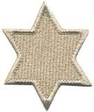 ■ワッペン■ダビデの星 銀