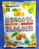 早川製菓 はちみつかりんきんかんのど飴