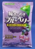 早川製菓 瞳きらめきブルーベリーキャンディ