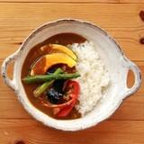 ■美濃焼陶器単品 ■風趣 セピアライン手付カレー皿