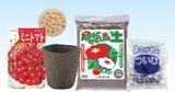 【ATC】ミニトマト栽培基本セット [002760]