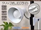 <LEDライト>店舗やお部屋の補助照明に♪ クリップ式LEDライト 白色/電球色