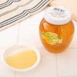 【フロリダオレンジハチミツ】ハチミツ(巣入り)(227g/453g)