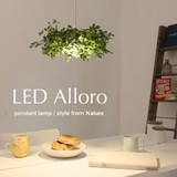 LEDアローロ ペンダントランプ