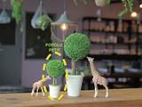 お水の要らない観賞植物 【POPOLU PETIT】ポポルプチ *個性派インテリアアイテム ガーデン ギフト
