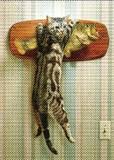 AVANTI PRESSグリーティングカード[バースデイ]猫