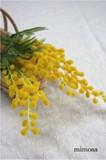 ミモザ 【造花】 3630