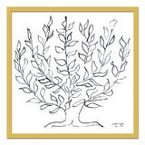 インテリアアート/Henri, Matisse/Le platane, 1951