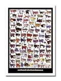 インテリアアート/Vittorio/100 Cats and a Mouse