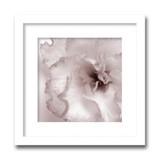 インテリアアート/Jk driggs/Blossom[Two]