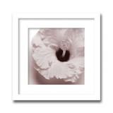 インテリアアート/Jk driggs/Blossom[Four]