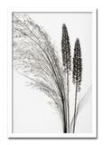 インテリアアート/Steven N.Meyers /Broom Grass