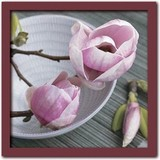 Art Collection/Magnolias on a bowl