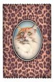 レ ケーク ド ベルトラン LES CAKES DE BERTRAND PARIS  Credit card case  カードケース 猫 ヒョウ柄
