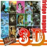 【3Dフォトピクチャー マグネットカード】3Dピクチャー
