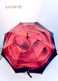通年新作)雨傘・長傘-婦人 アート傘シリーズフラワー柄手開き傘