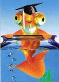 AVANTI PRESS グリーティングカード [卒業向きカード] <金魚>