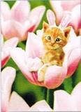 AVANTI PRESS グリーティングカード [イースター用] <フラワー×猫>
