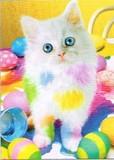 AVANTI PRESS グリーティングカード [イースター用] <猫×たまご>