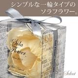 【SOLAソラ:発売元】ソラフラワー ナチュラル Sola Flower Natural(ソラナチュラル)