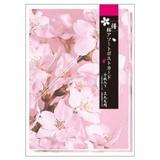 ステーショナリー/桜シリーズ/桜アソートポストカード