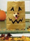 AVANTI PRESS グリーティングカード ハロウィン 犬 袋の仮面