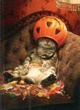 AVANTI PRESS グリーティングカード ハロウィン 猫 かぼちゃ キャンディー