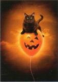 AVANTI PRESS グリーティングカード ハロウィン 猫 かぼちゃ 風船