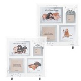 Pet Glass Photo Frame Cat Photo Frame Pet Exclusive Use Glass