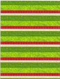 THE GIFT WRAP COMPANY ジャンボラッピングペーパー <ボーダー> 包装紙