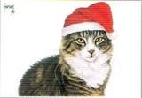 ART UNLIMTED クリスマスポストカード <猫×ぼうし>