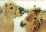 ART UNLIMTED ポストカード <馬>