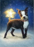 AVANTI PRESS クリスマスカード<犬×雪>