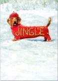 AVANTI PRESS クリスマスカード<犬×星>
