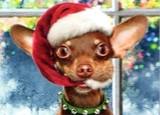 AVANTI PRESS クリスマスカード<犬×ぼうし>