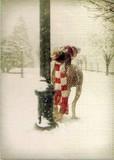 AVANTI PRESS クリスマスカード<犬×マフラー×雪>