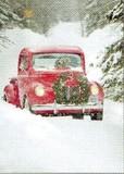 AVANTI PRESS クリスマスカード<犬×車×雪>