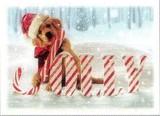 AVANTI PRESS クリスマスカード<犬×杖×雪>