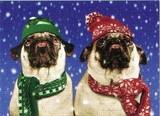 AVANTI PRESS クリスマスカード<犬×マフラー×ぼうし>